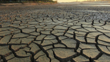 Where did El Nino go? Heat, dry spell stoke drought worry