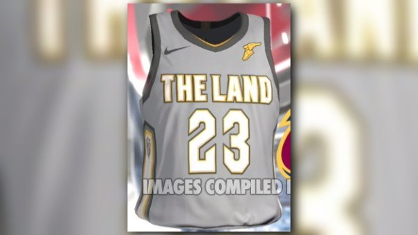 cleveland cavaliers the land jersey