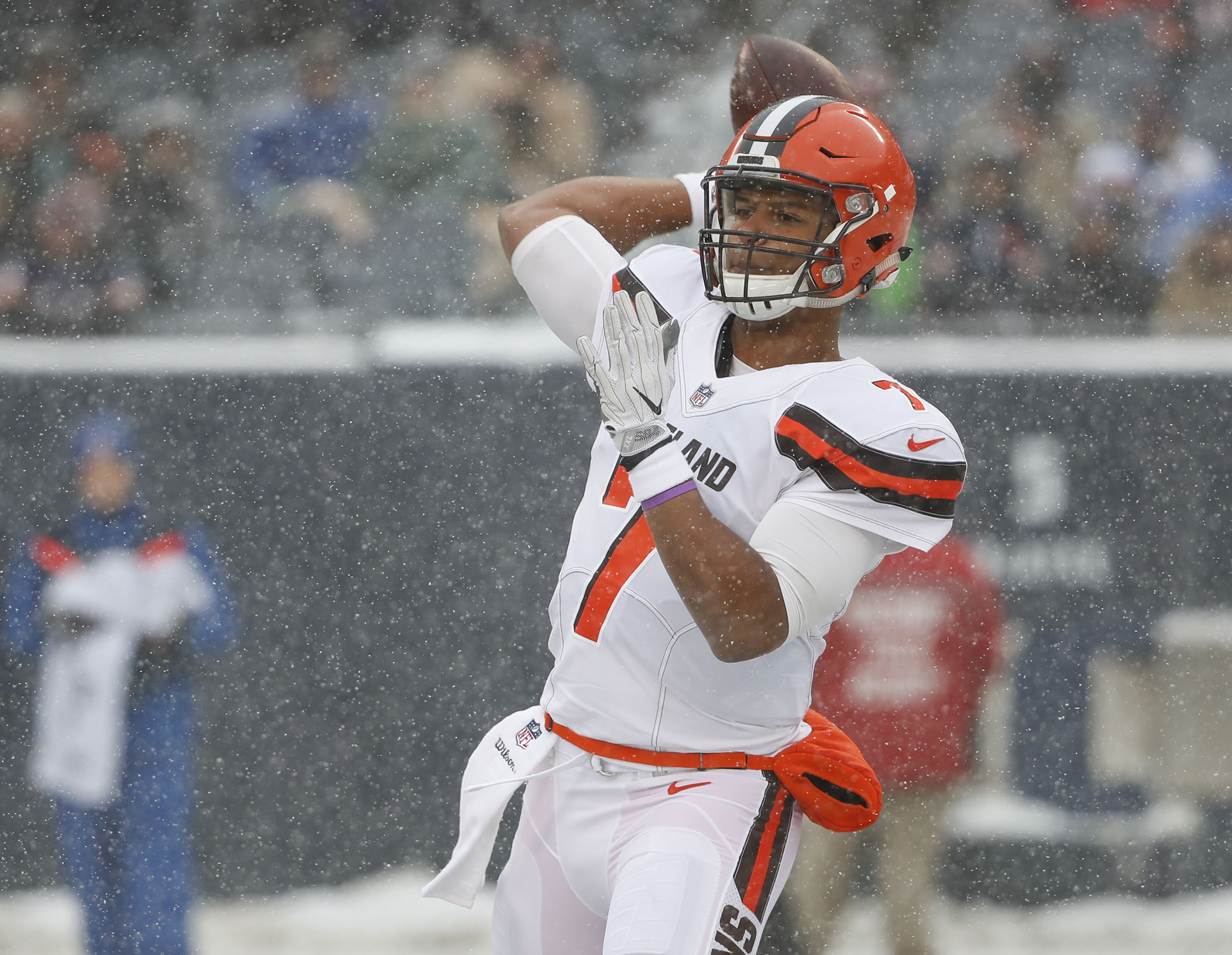 Browns end perfectly very bad  season -- 0-16